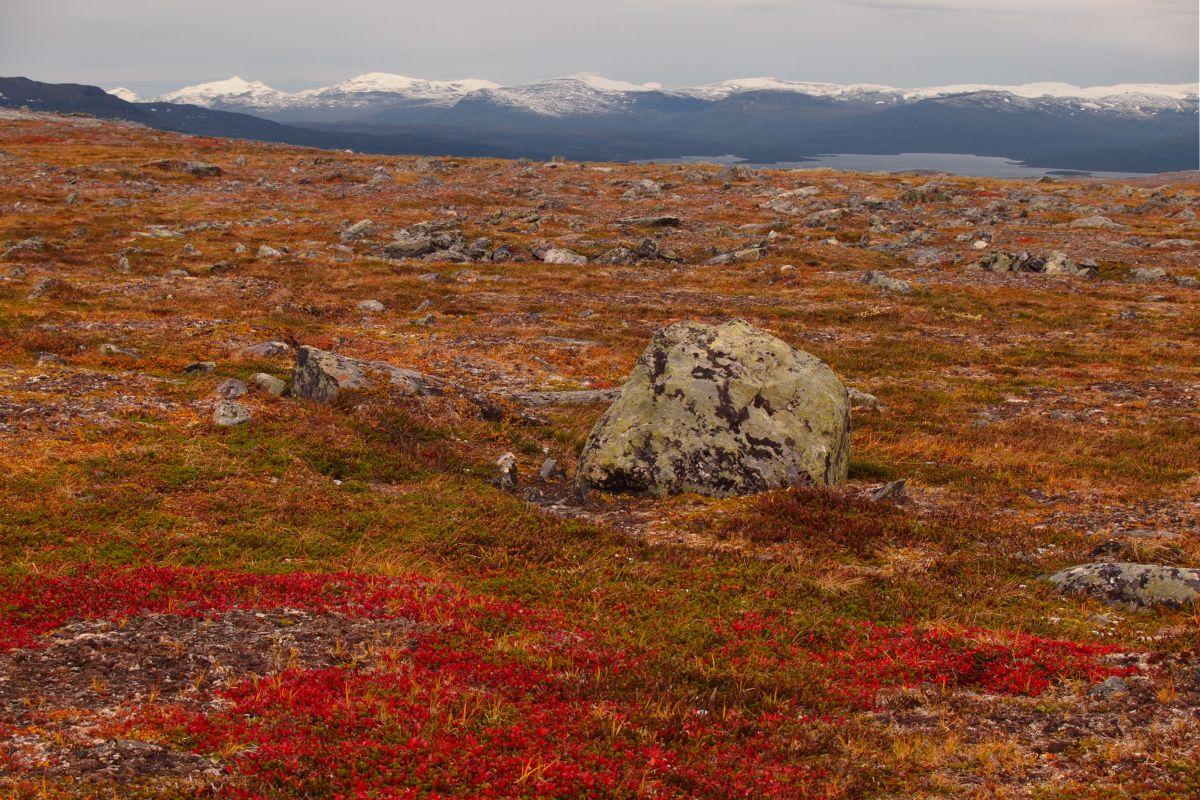 Abisko mountains b taken by Tyler Logan 1200x800px 72dpi.jpg