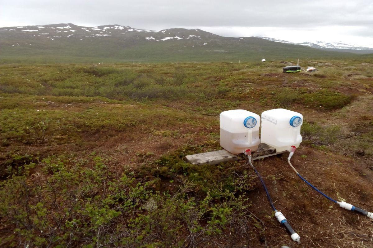 Tundra experiment Carolina Olid 1200x800px 72dpi.jpg
