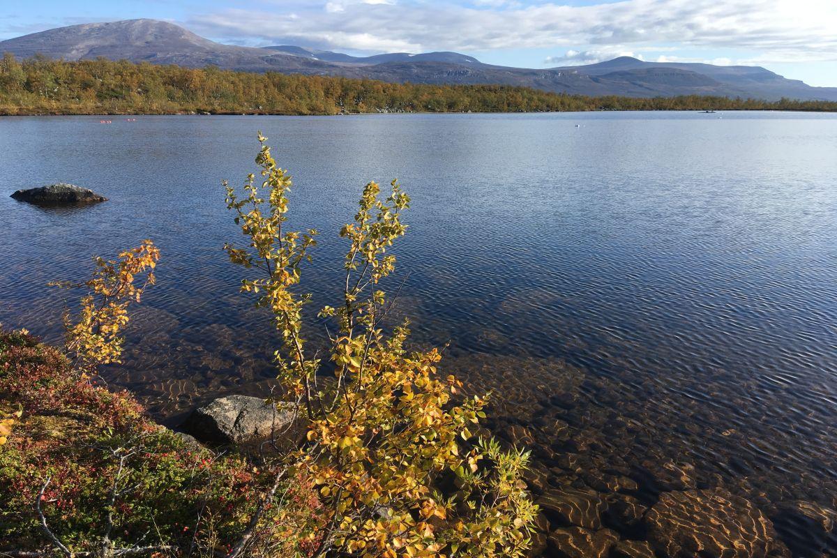 Lake_Almberga_fall_by_Jenny_Ask_on_180907 1200x800px 72dpi.jpg