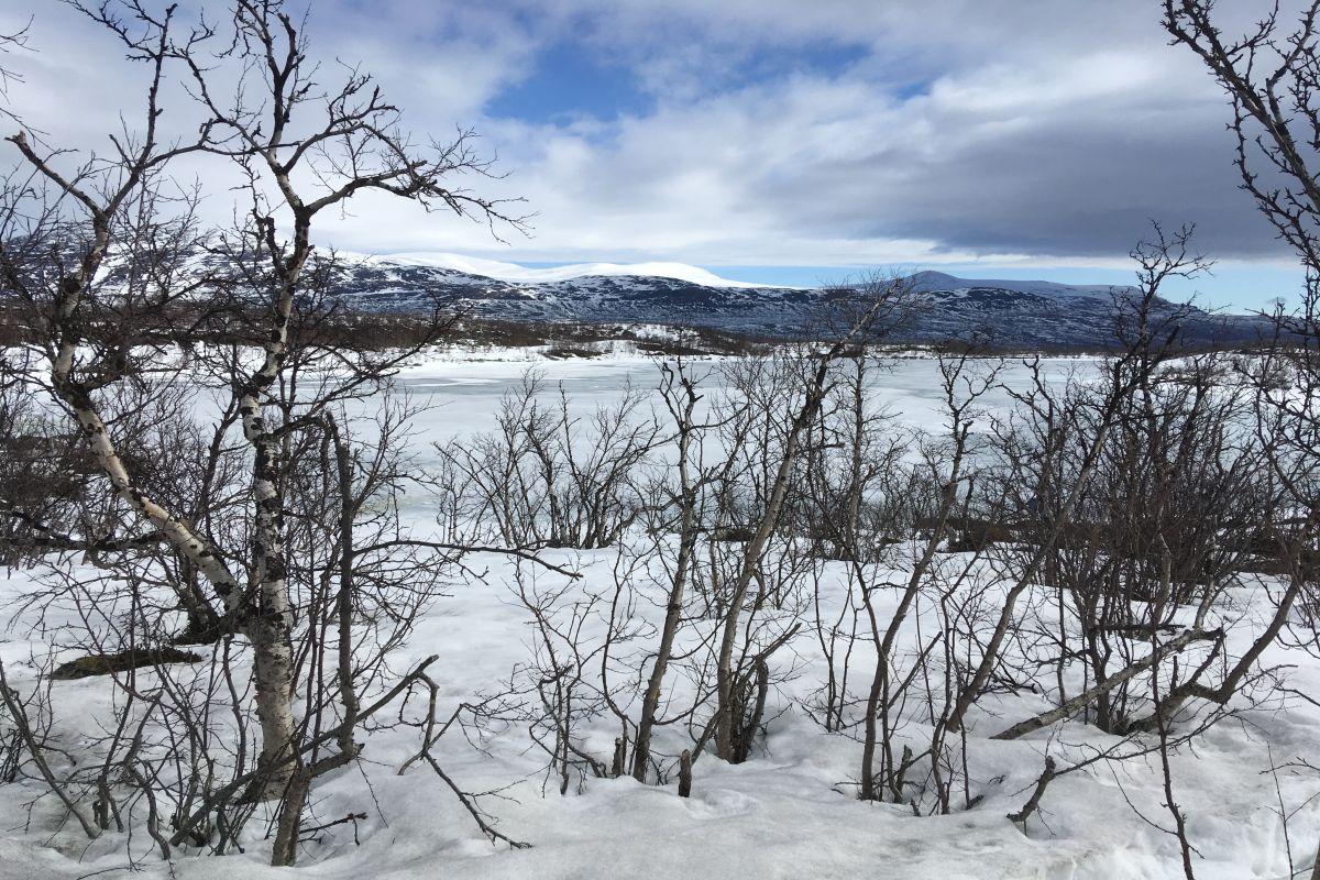 Lake_Almberga_winter_by_Jenny_Ask_on_180426 1200x800px 72dpi.jpg