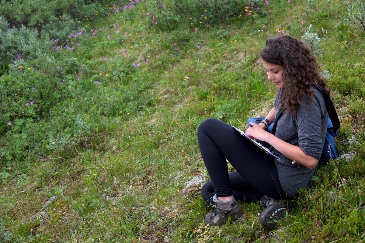 Bumblebee Phenology, Nuolja, w. Tara Cox, Olivia Bates, Frida Brännlund 9262 1200x800px 72dpi.jpg