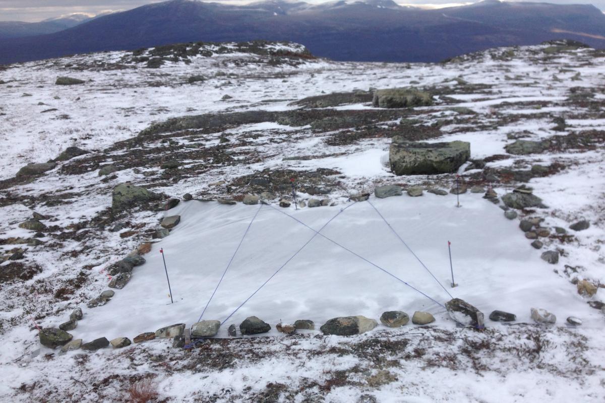 Experiment Site near Abisko, Photo taken by Eva Krab
