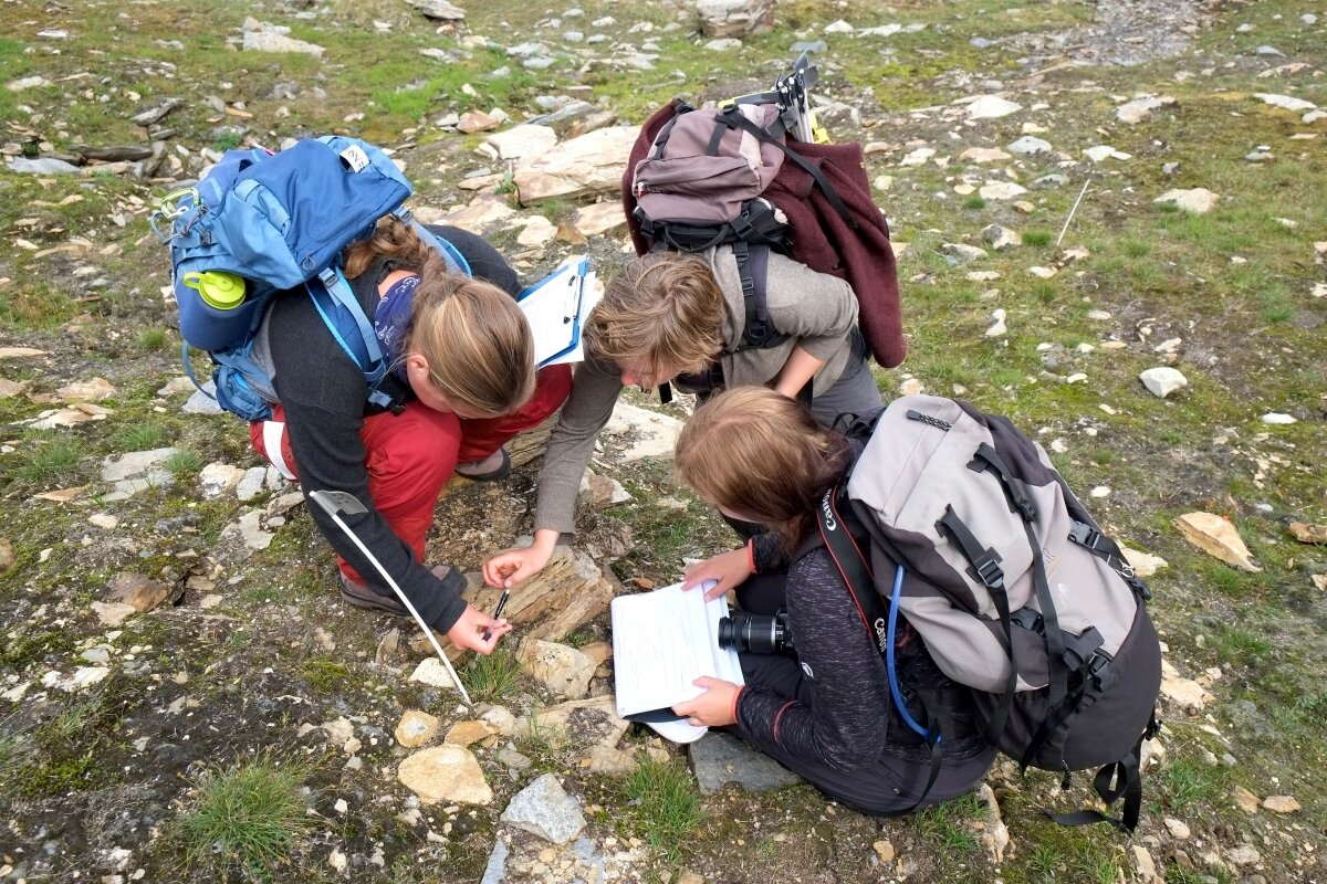 Students conducting research near Abisko, Sweden. Photo by Yrsa Axelsson
