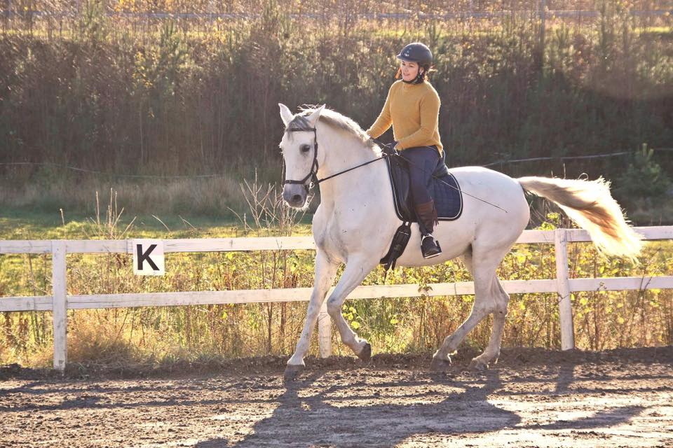 Risuena, PRE hoppe, født 2005