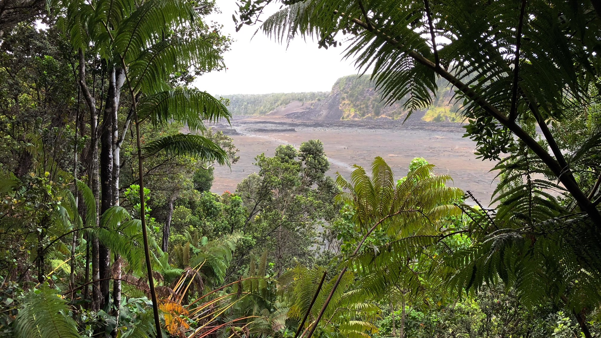 Peeking through the rainforest onto Kīlauea Iki--a small volcano near the larger Kilauea.