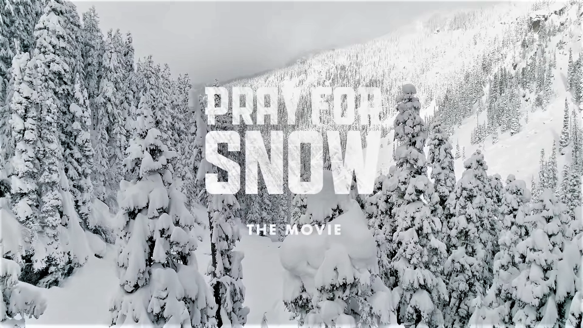 Pray for Snow.png