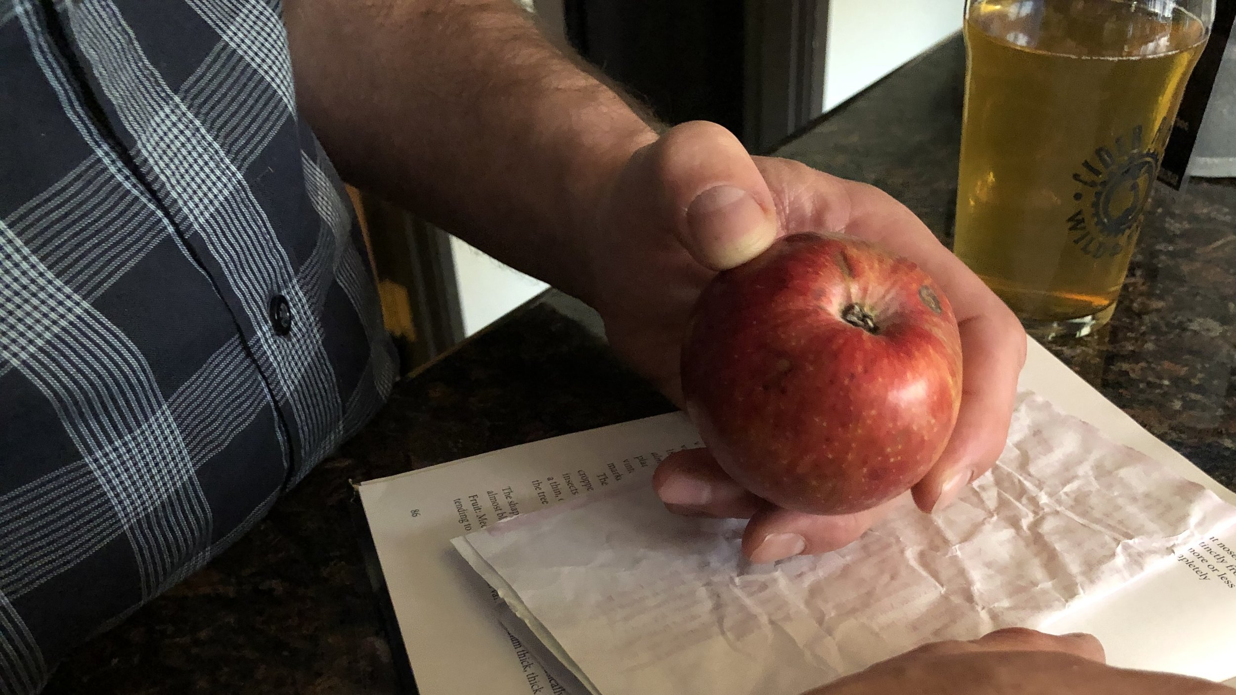 Our mutual comfort zone—talking apples.