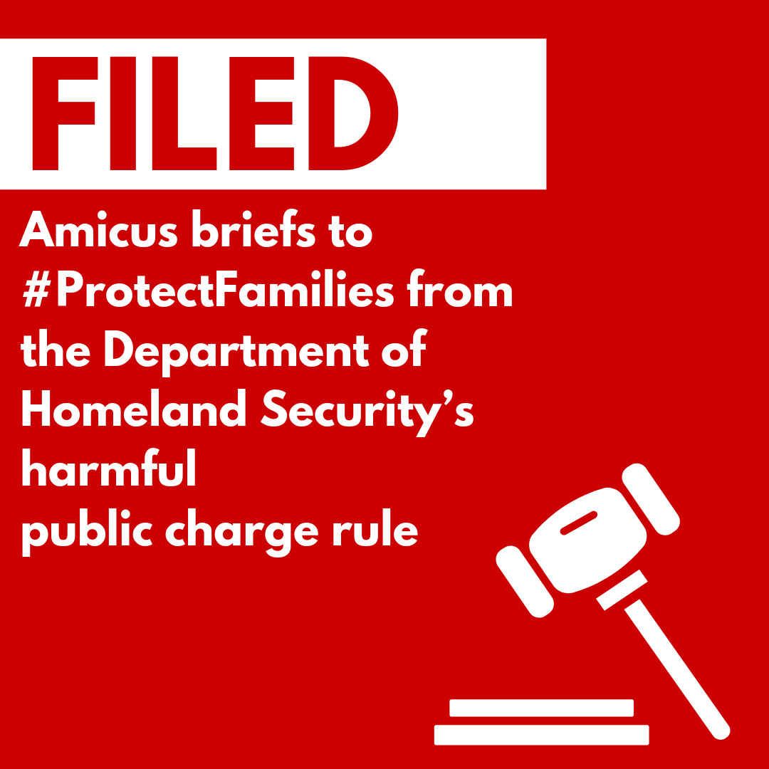Public charge brief graphic (2).png