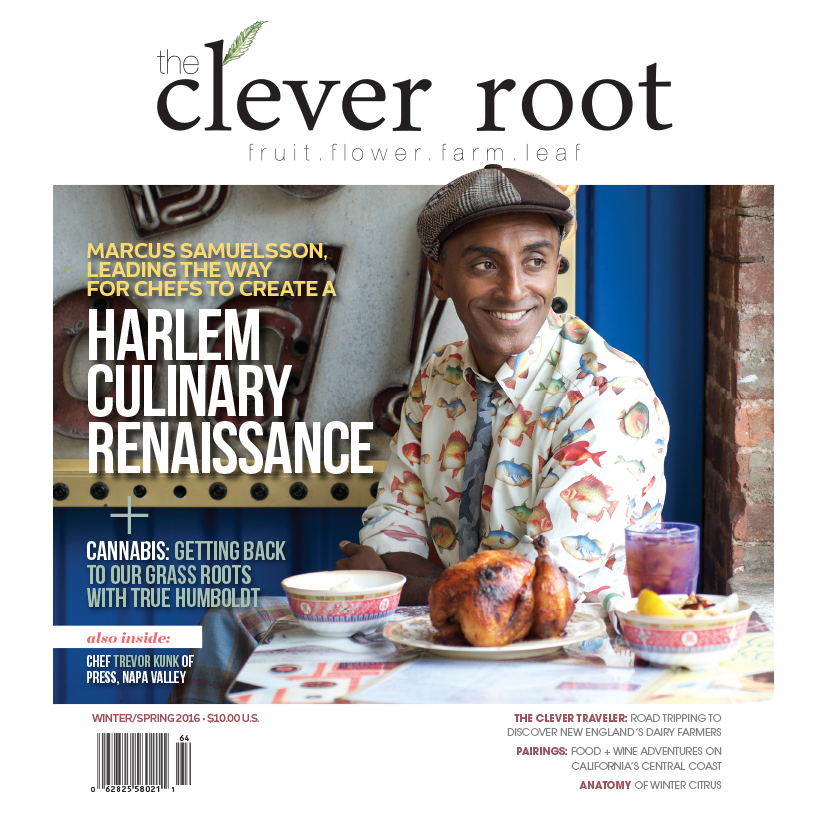 Clever Root Magazine