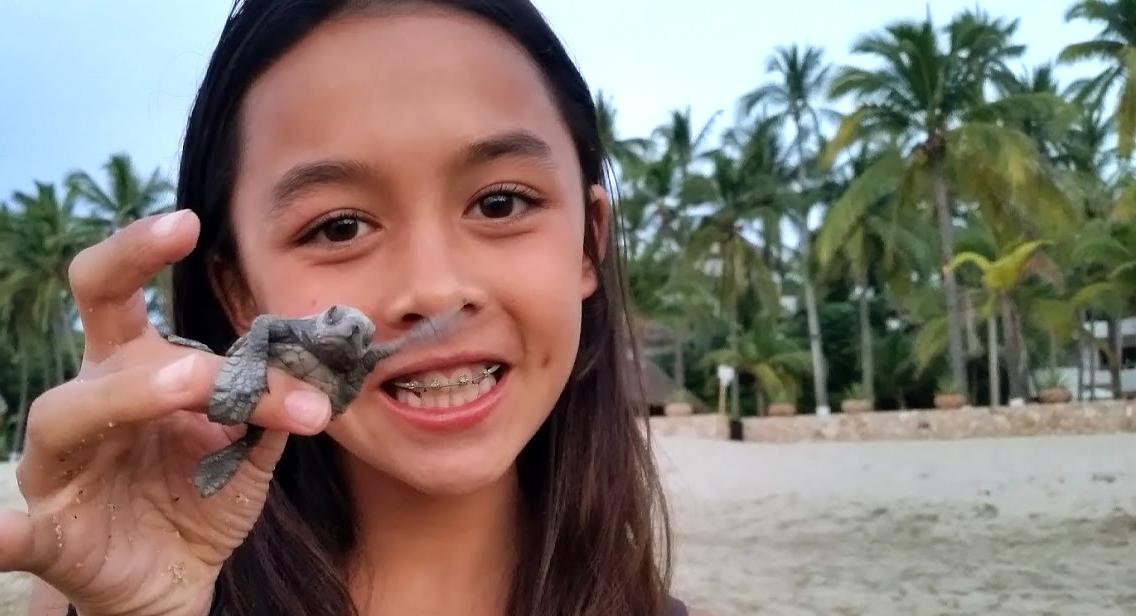 eco-sea-turtle-mabel.jpg