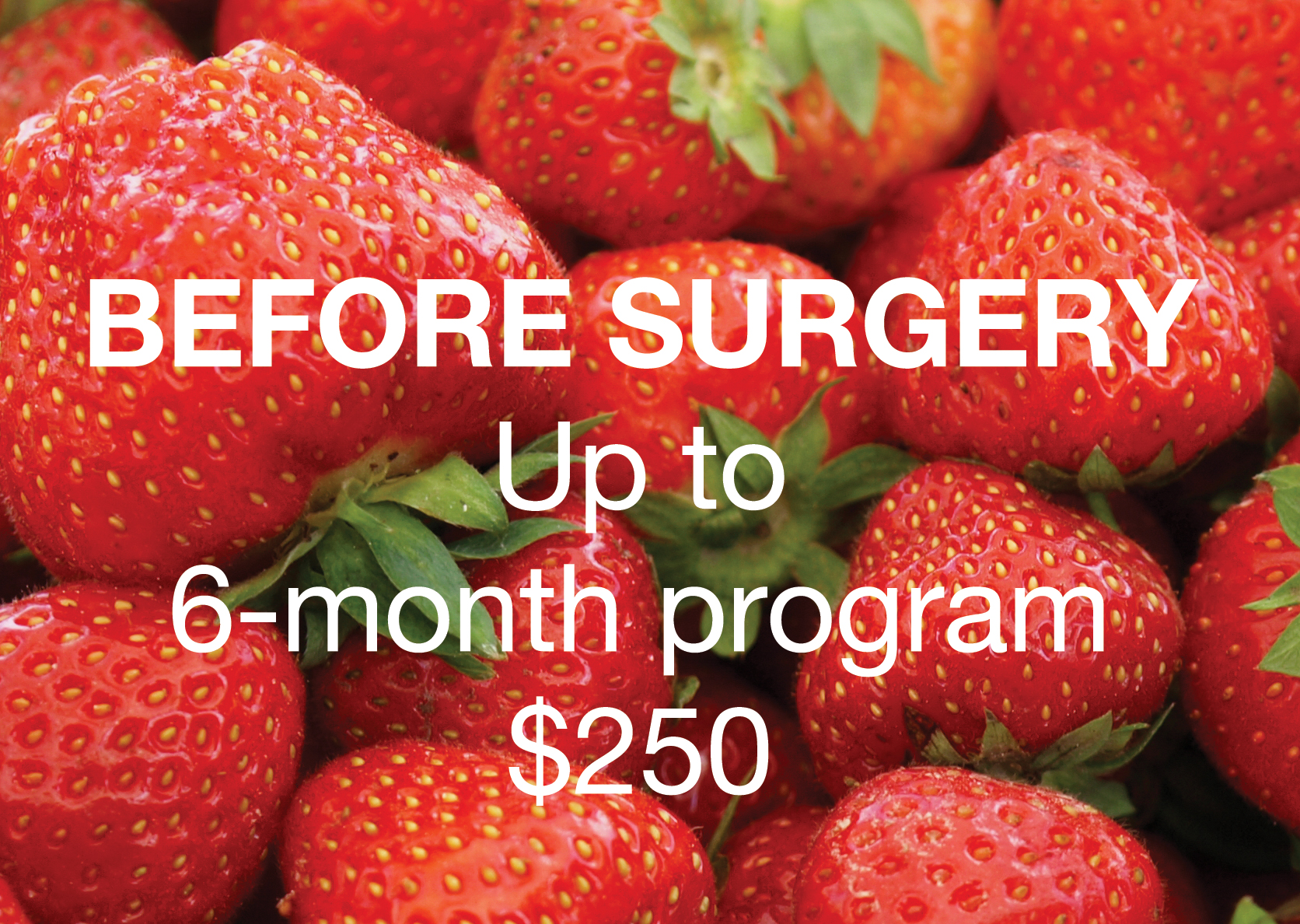 Strawberry-Up-to-6-Months-with-cost-FINAL.jpg
