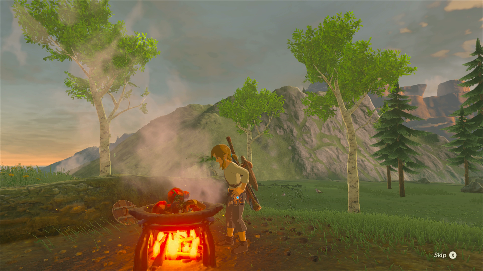 Cooking is essential to Link's survival in the harsh land of Hyrule