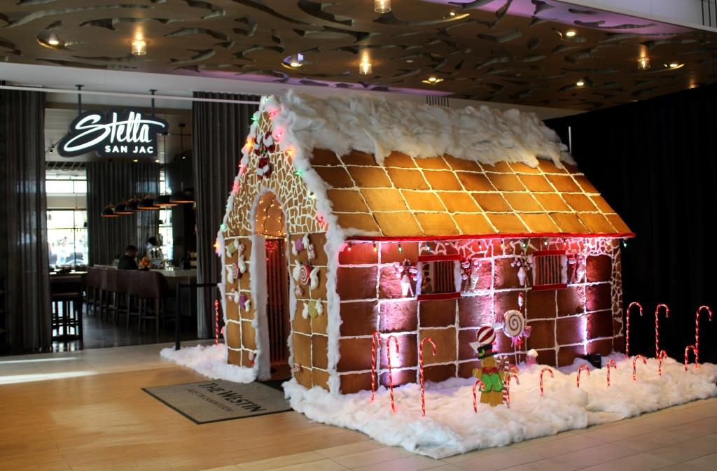 Gingerbread House compressed.jpg
