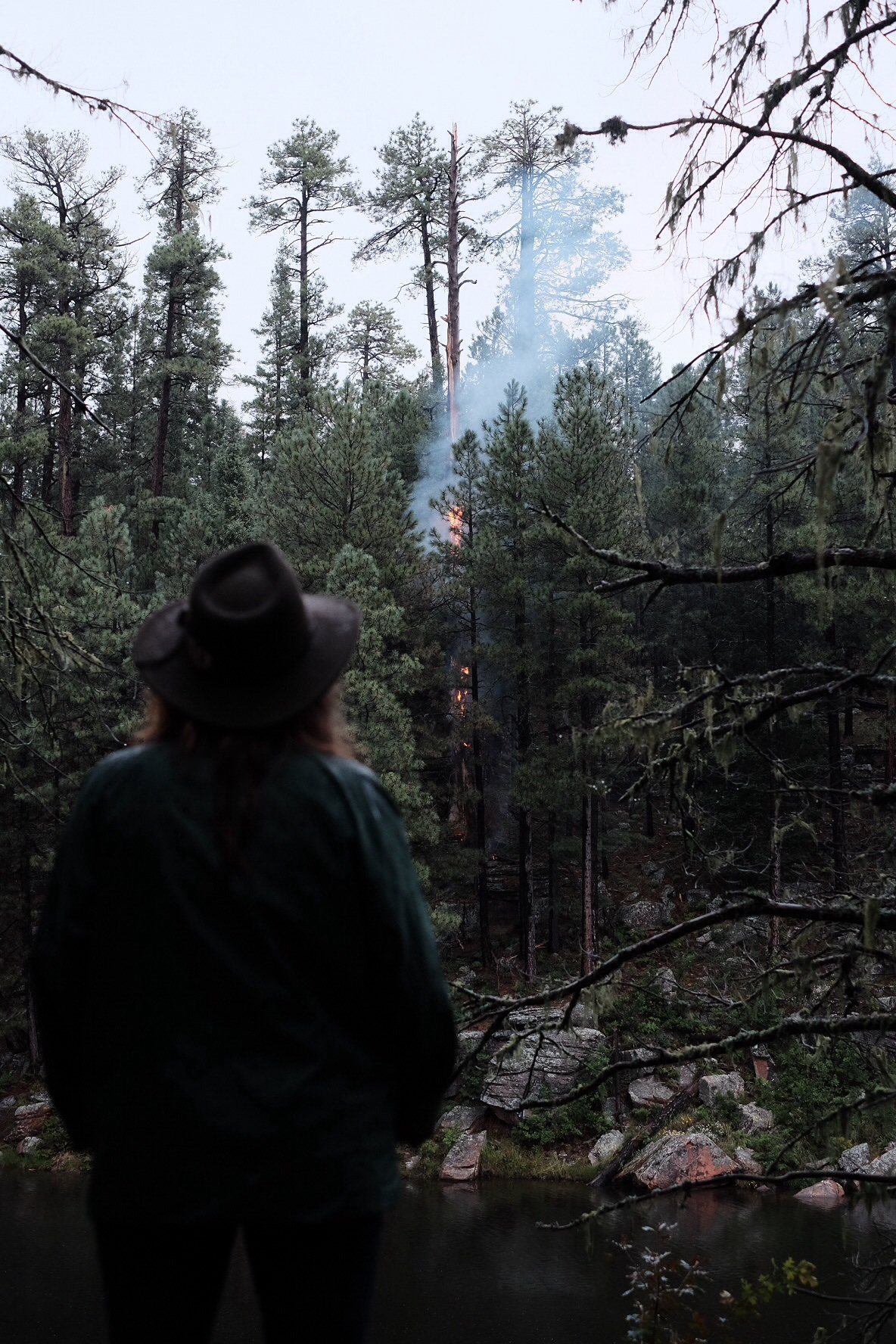 Beth watches a tree burn that was struck by lightning near our cam