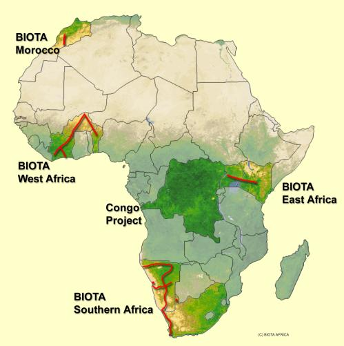 Figure S4.1.  Regions and transects monitored in BIOTA-AFRICA, ©German Remote Sensing Data Center (DFC), German Aerospace Center (DLR).
