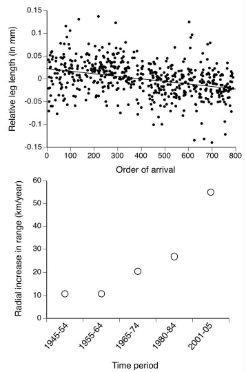 Figure S10.1.  Cane toads that arrived most recently at a site (those at the invasion front) have the longest legs – and invasion speed has increased over the last 60 years (Adapted by permission from Macmillan Publishers Ltd: Nature (Phillips  et al.  2006), ©2006).