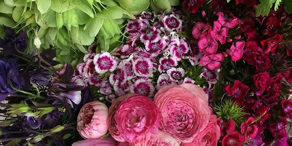 Flourish Flowers -