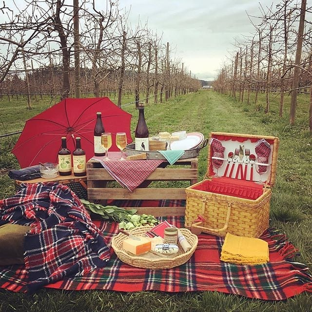This weekend is the Apple and Cider Festival, taste over 40+ local ciders at @eaglemountwinecider on Saturday and celebrate World Apple Day at @finnriver on Sunday 🍁🍎🍂🍷Ridiculously dreamy picnic styled by the talented @rebekah4seed_design! #weddingsacrossthesound #seeddesign #eventstyling #appleandciderfestival #finnriver