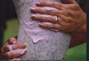 Ann Healing hands.jpg