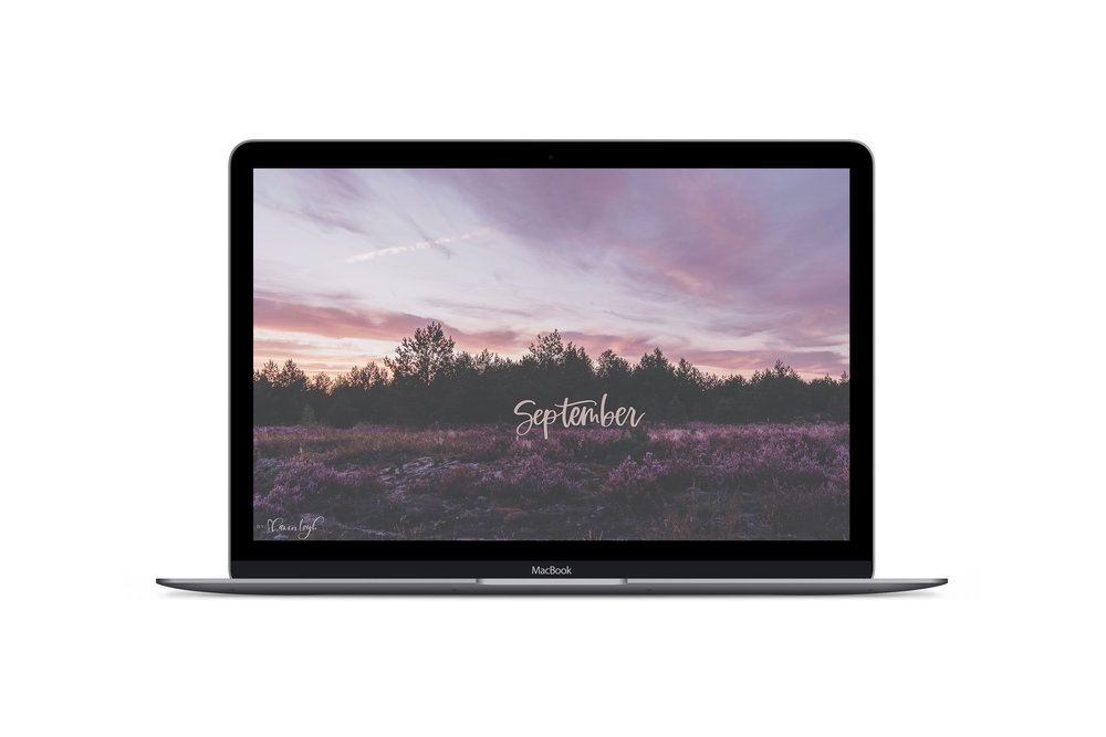 macbook-mock-dribbble (1).jpg
