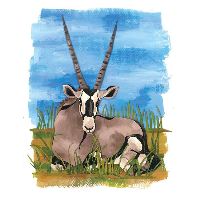 oryx are a African antelope. There are 3 different types of Oryx with different colour and patterns. #animal #africananimals #papercut #paperartist