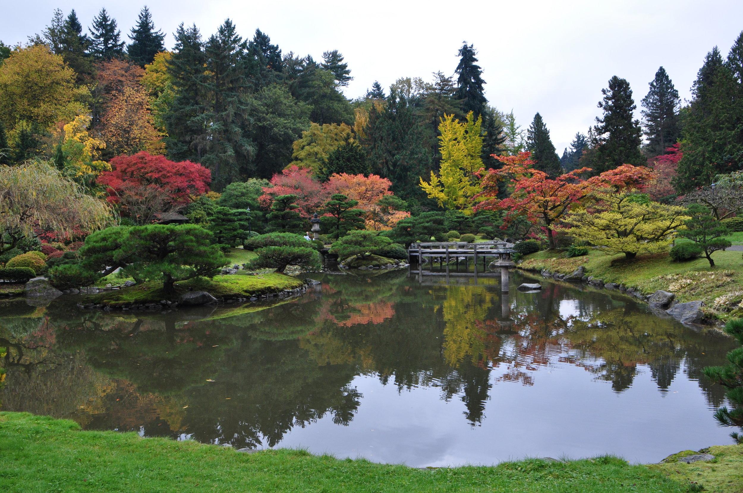 Seattle_Japanese_garden_2011_05.jpg