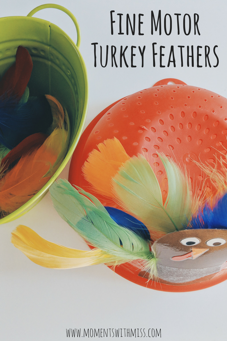 Turkey Feathers in a Strainer fine motor activity for toddlers www.momentswithmiss.com 3.png