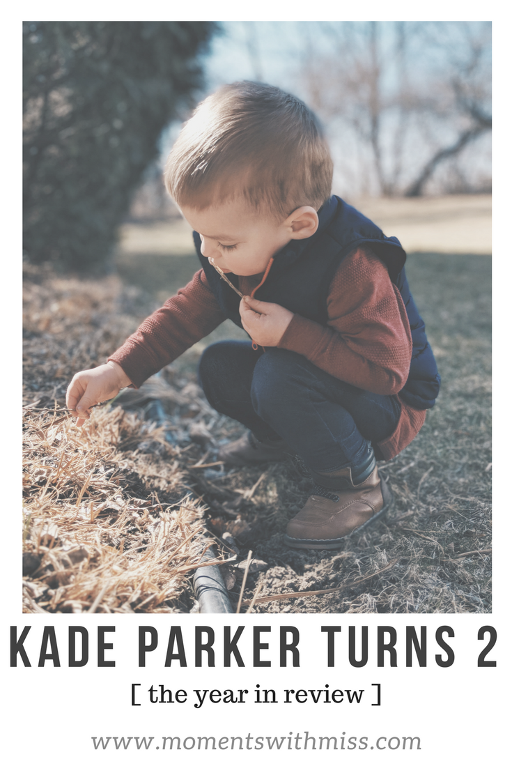 Kade Parker Turns 2 a year in review www.momentswithmiss.com.png