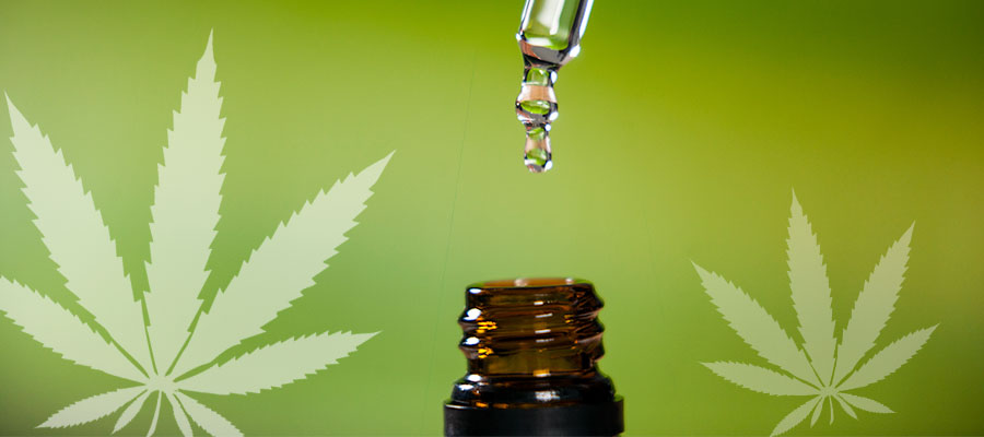 news-cbd-oil.jpg