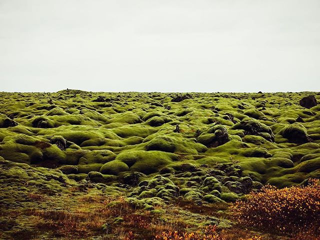 Eldhraun. The home of Bilbo Baggins.