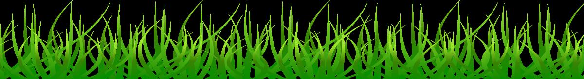 BETTER-GRASS.png