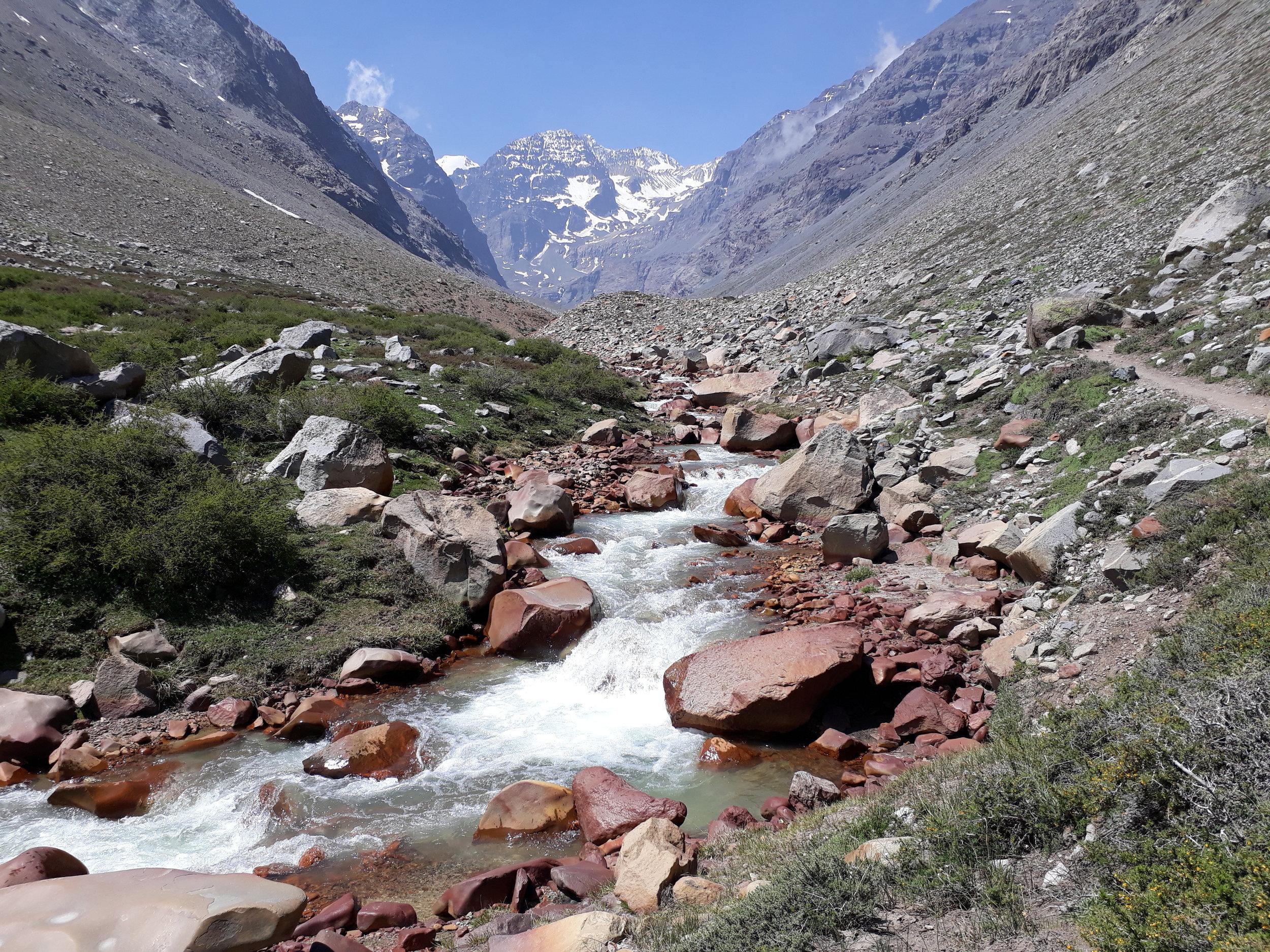 Yerba Loca Glaciar Paloma.jpg