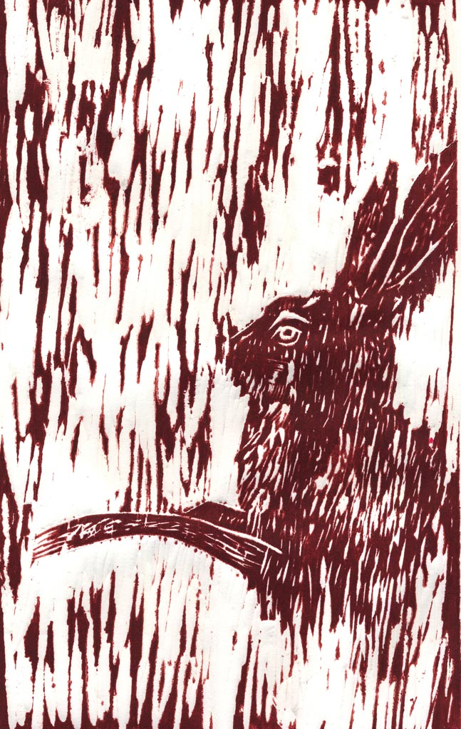 Red Rabbit Run