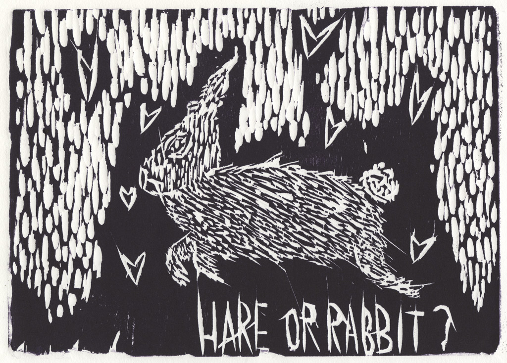 Hare or Rabbit?