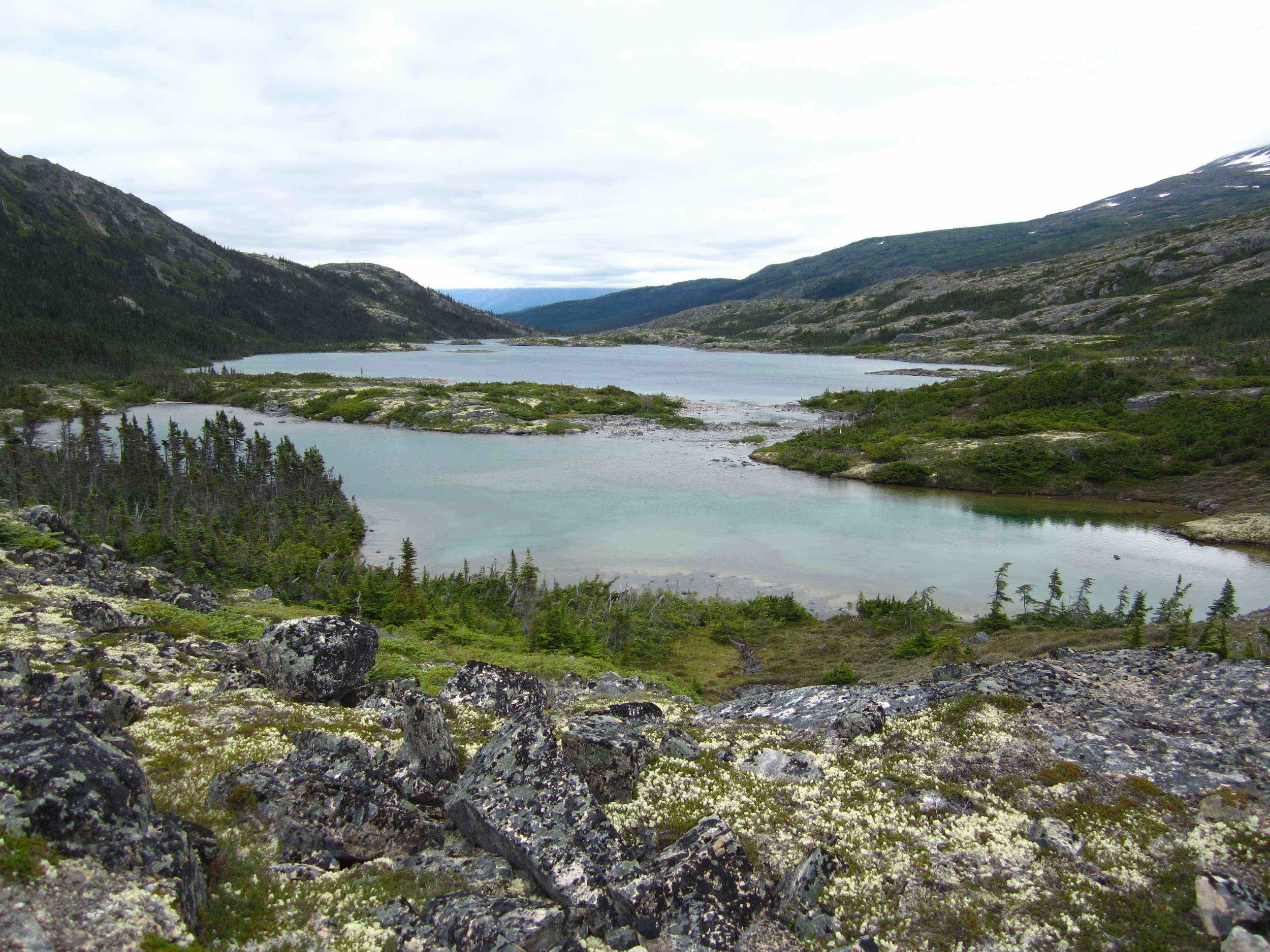 Entering the boreal forest area on the Canadian side.