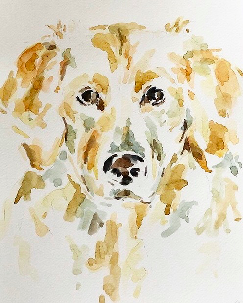 Millie, age one: a commissioned pet portrait