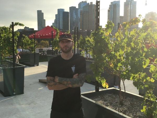 TJ Provenzano at Rooftop Reds in Brooklyn