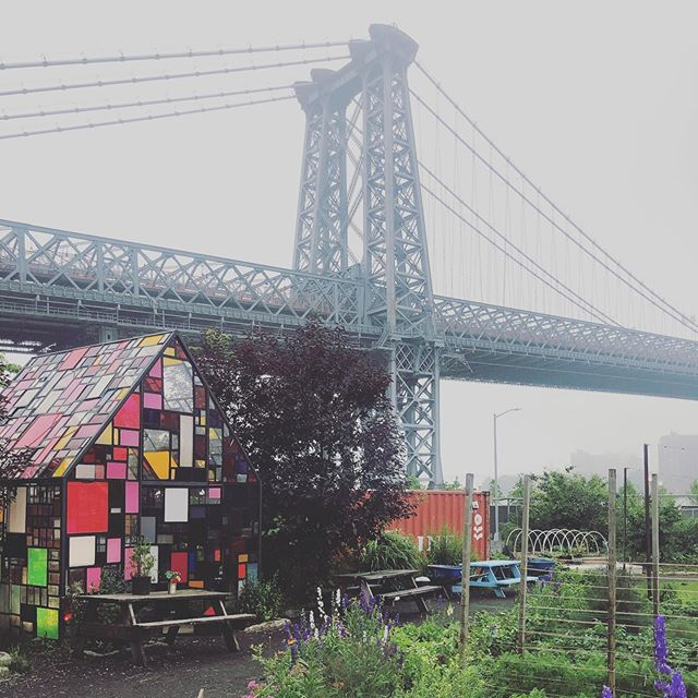 Gorgeous even when it's gray. Have you been to @northbrooklynfarms next to Domino Park? Rosé bar opening soon! Follow them on Instagram to find out when! #williamsburg #urbanfarm #dominopark . . . . . . #brooklyn #urbanfarming #nyc #travel #traveler #foodie #iloveny #ilovebk #likealocal #brooklynlocal #eatlocal #belocal #shoplocal #foodies #likealocaltours