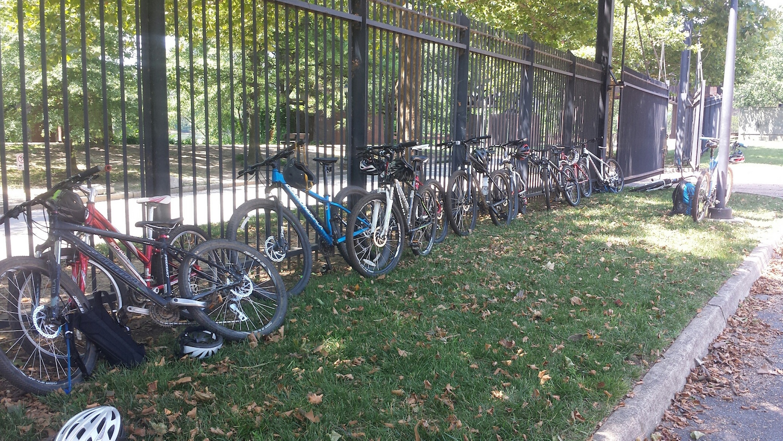 bikes-in-a-row.jpg