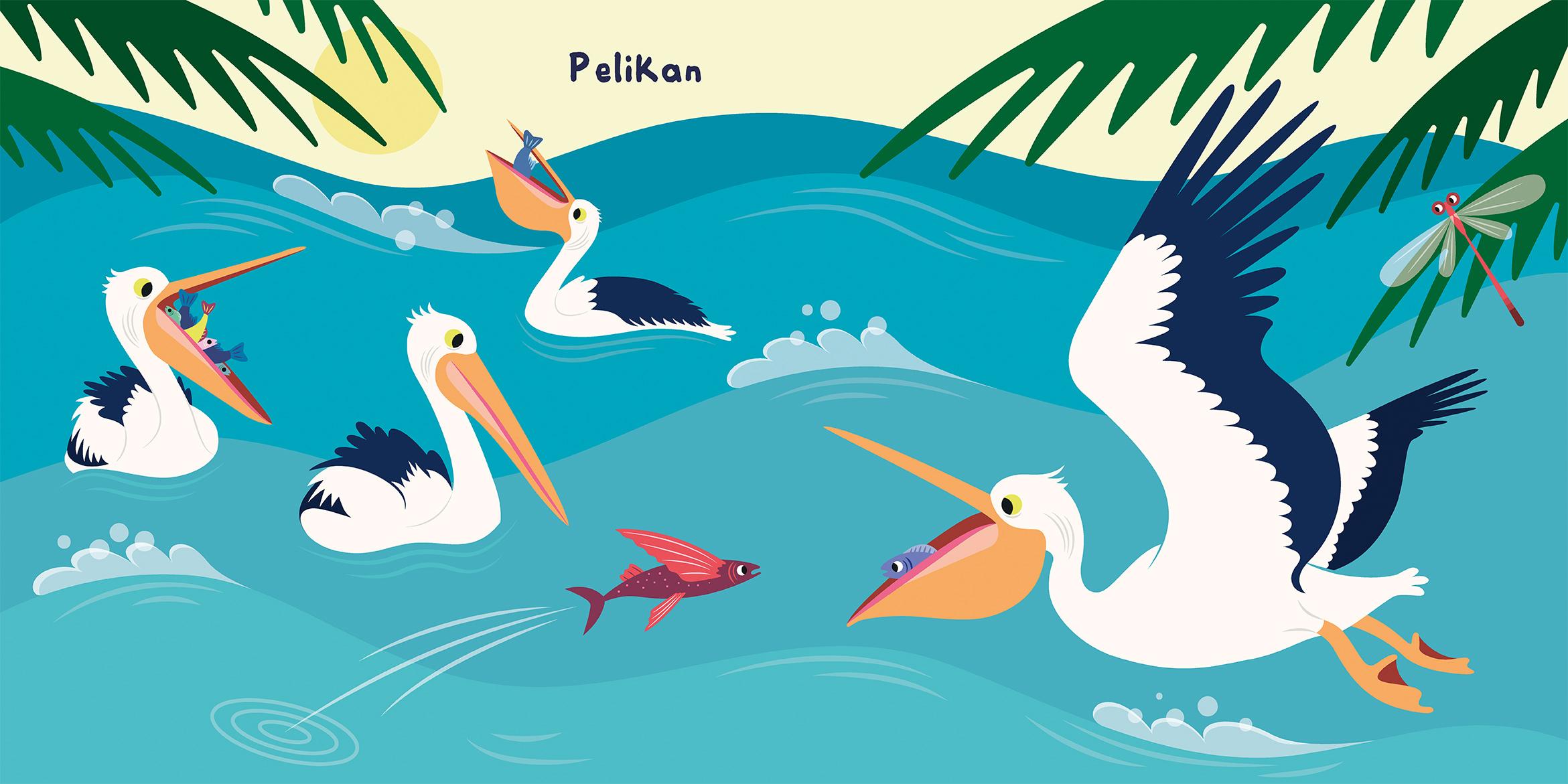 Pelikan.jpg