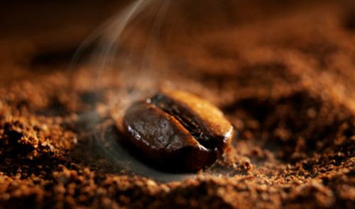 Coffee-Bean.jpg