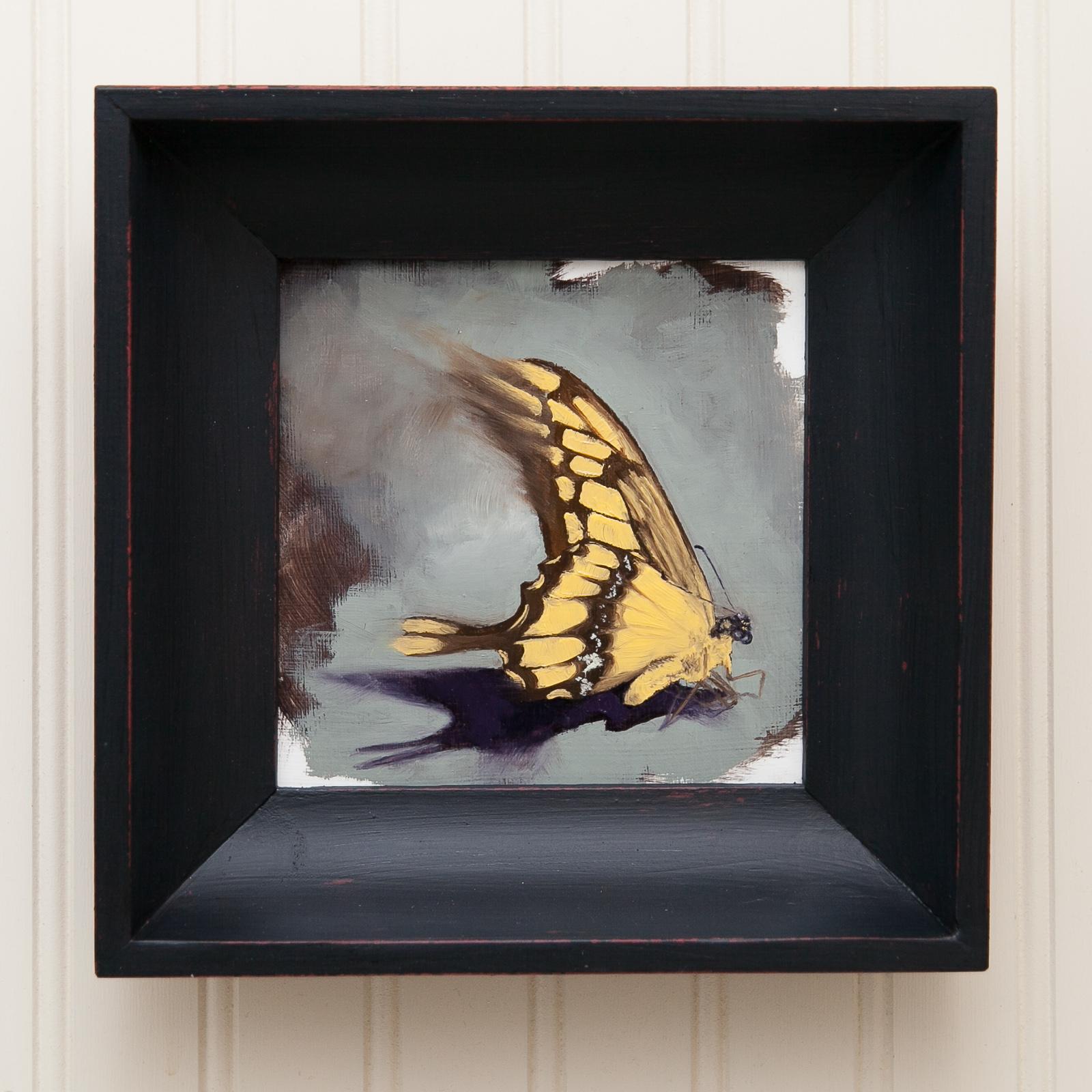 Butterfly Study #7.jpg