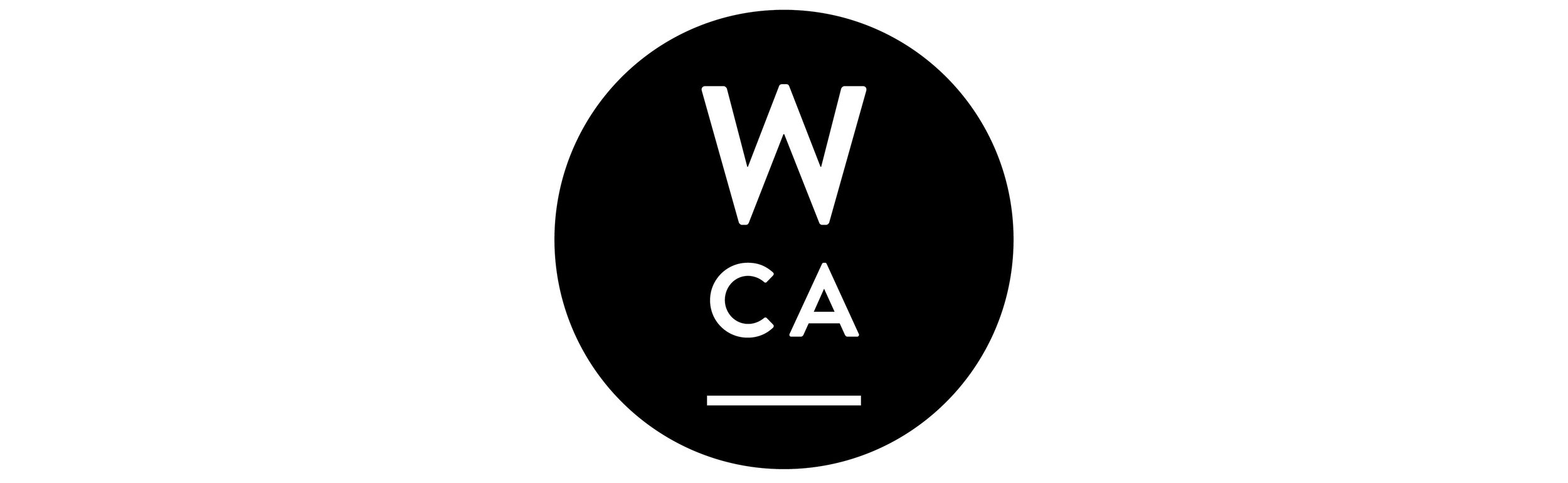 Workshop CA