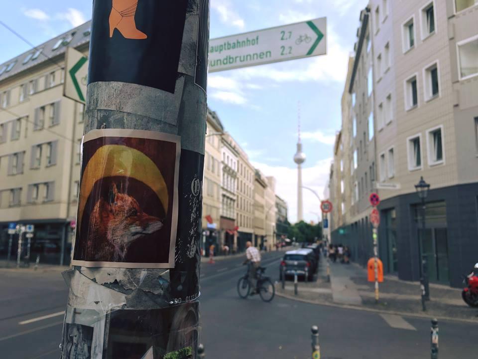Kaylee Johnson, Berlin