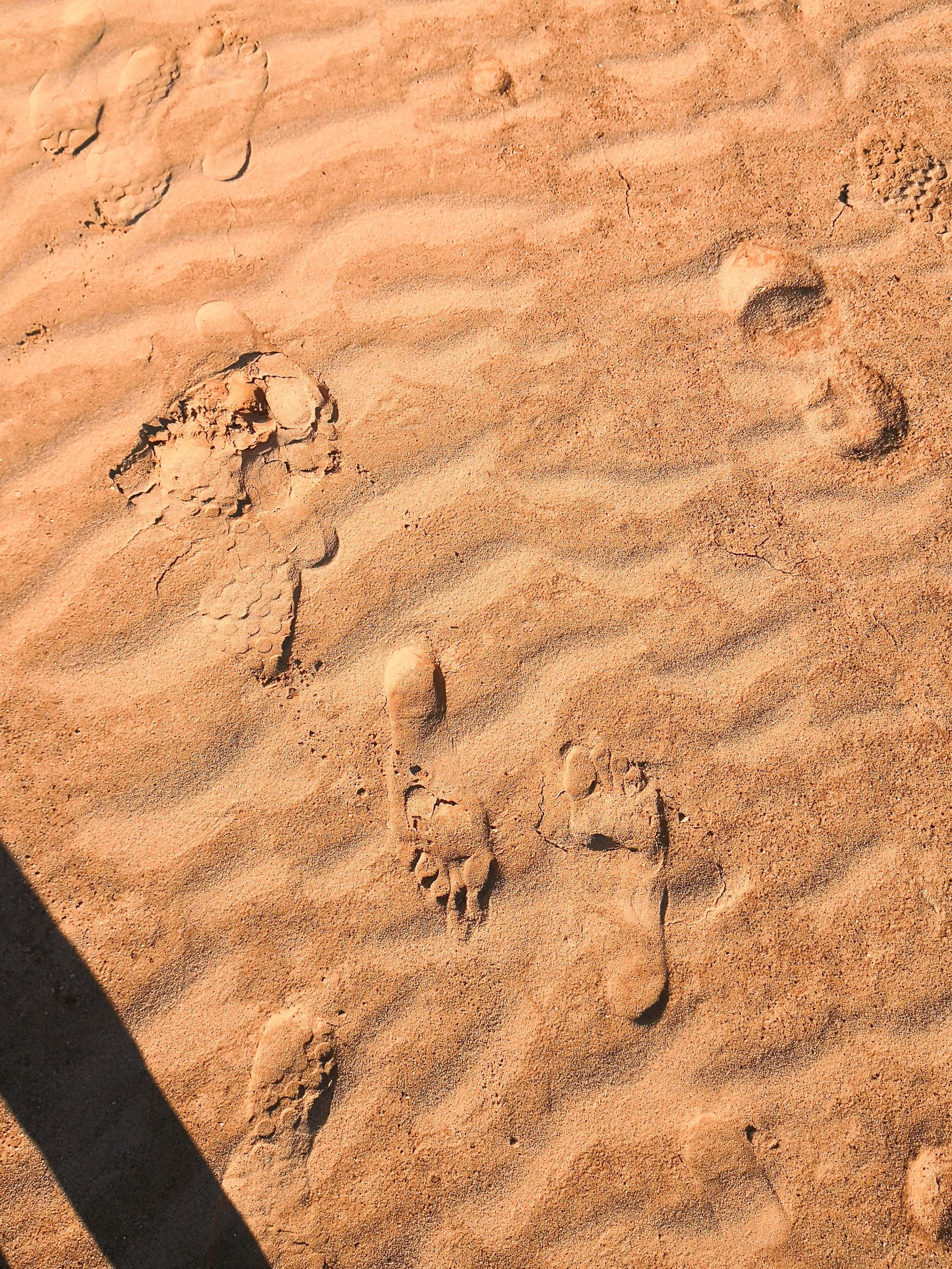 With each step of my bare feet, the cold, course, sand exfoliated that anxiety.