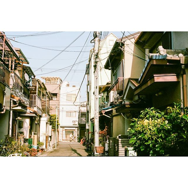 The sun had already begun to tangle with the power lines above the residential Osaka streets. Neighbours gathered their laundry from their balconies. Fresh sweets from a bakery combined with the savoury scent of grilled meat at an izakaya.
