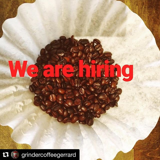 Our friends at @grindercoffeegerrard are hiring! Details 👇 #torontocoffeejobs #Repost @grindercoffeegerrard with @get_repost ・・・ Come join our small dynamic team. We are looking for a part time experienced barista for 2-3 shifts a week (1O-15hrs). Early mornings a must. Food handlers certificate will be required. Some basic prep (sandwich assembly)  will be part of the position.  Candidate must come with a passion for good coffee and good customer service. We are a small business with a big heart. Apply in person or email us at grindercoffeegerrard@gmail.com #helpwanted #baristalife @torontocoffeecommunity #cafeto #baristawanted #smallbusinesslife