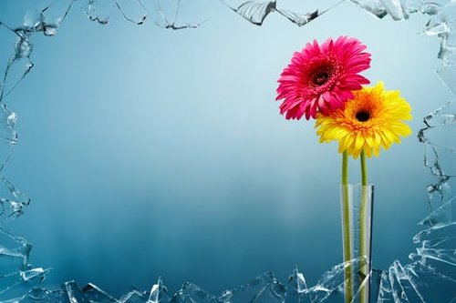 artwork-colorful-art-flowers-68604.jpeg