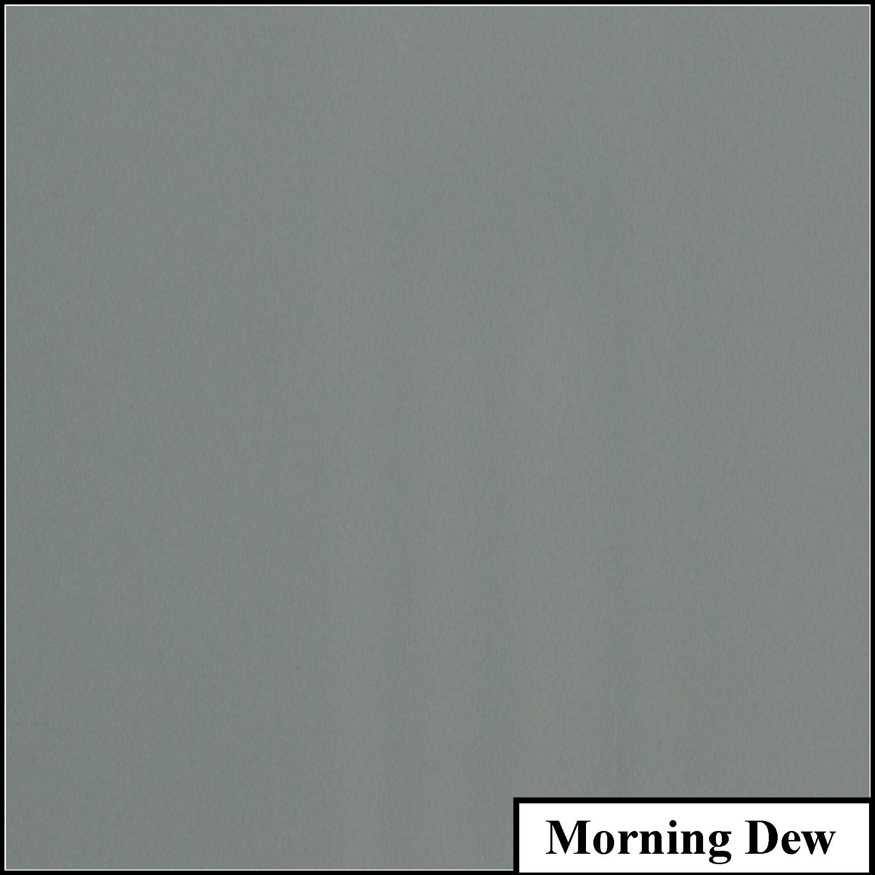 Morning Dew.jpg