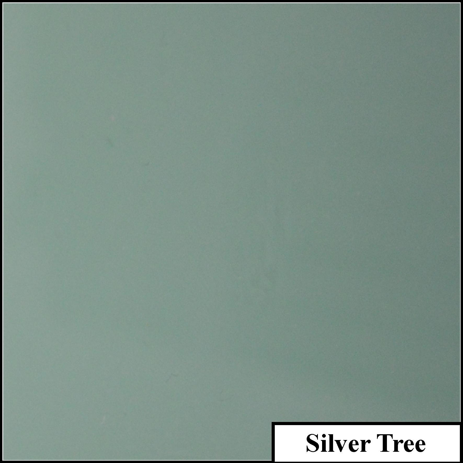 Silver Tree.jpg